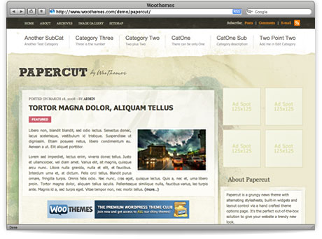 Papercut_WordPress_Premium_Theme