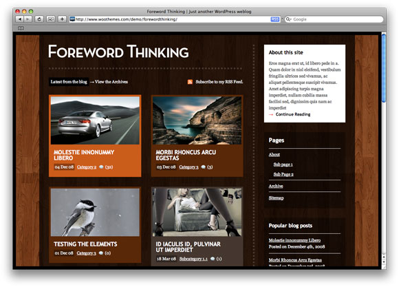 Foreword Thinking - Wordpress Premium theme by WooThemes - Exclusive by iTZFREE