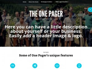 One Pager by Woo Themes