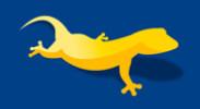 gecko-designs