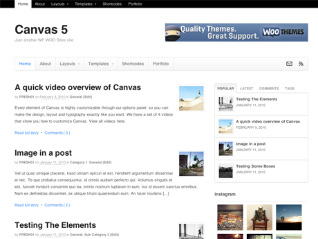 Canvas - Developer Package 4.6.10